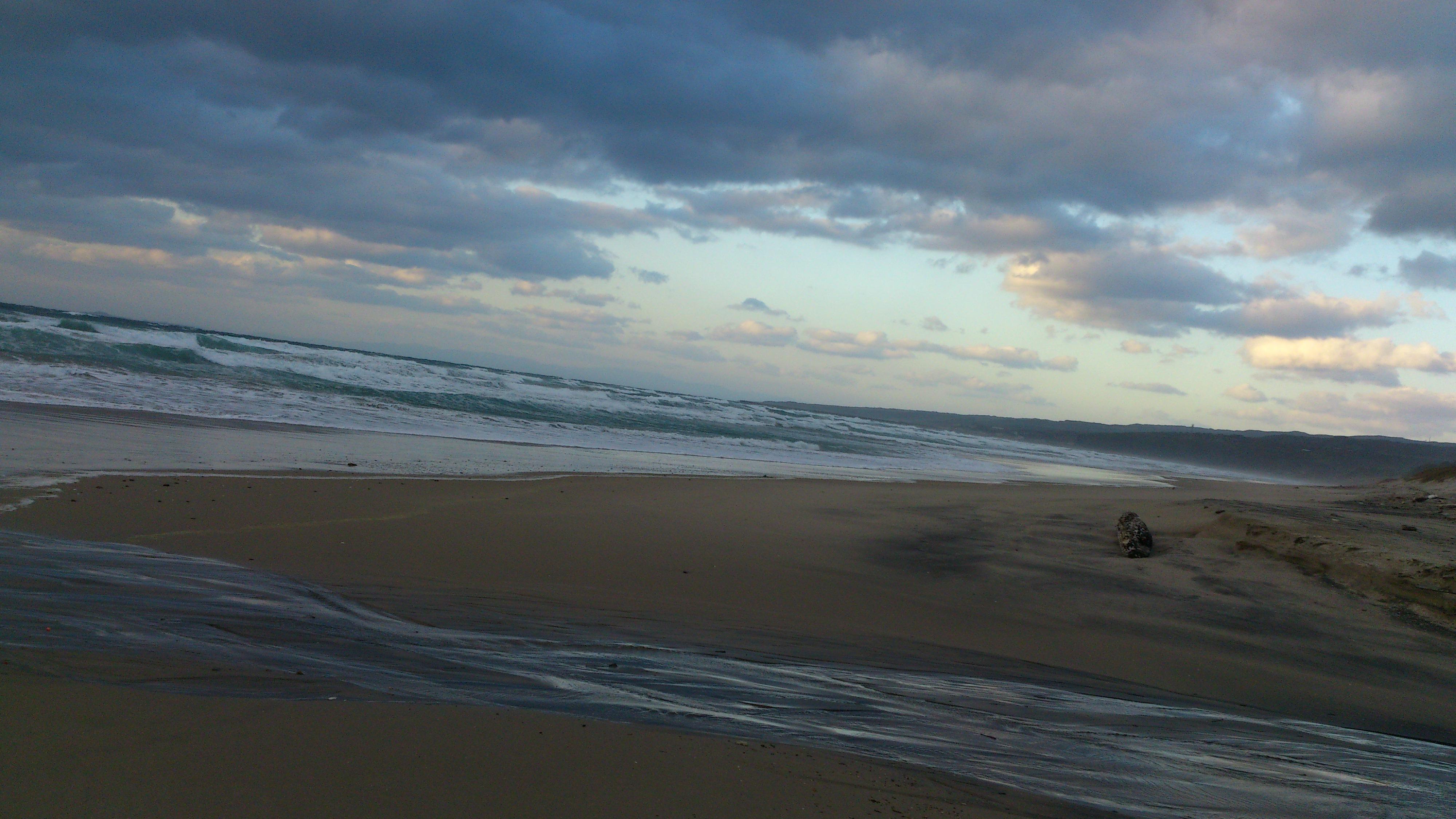 2012年12月。僕は種子島を一人で旅した:種子島の純粋な海