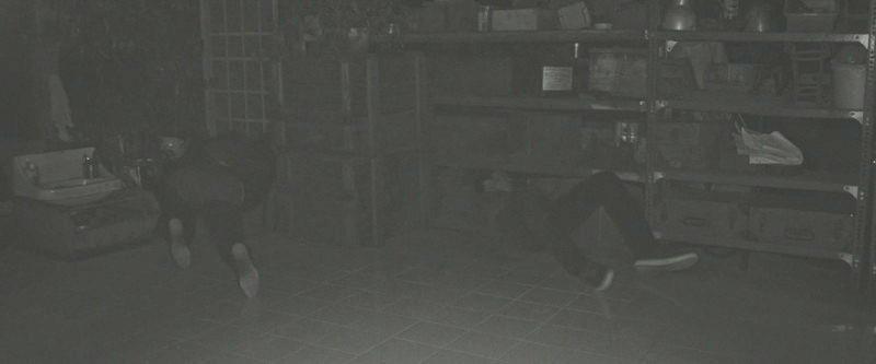 真っ暗闇で逃げ惑うロッキーとアレックス