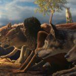 【75点】狼に育てられた少年「モーグリ ジャングルの伝説」評価と感想