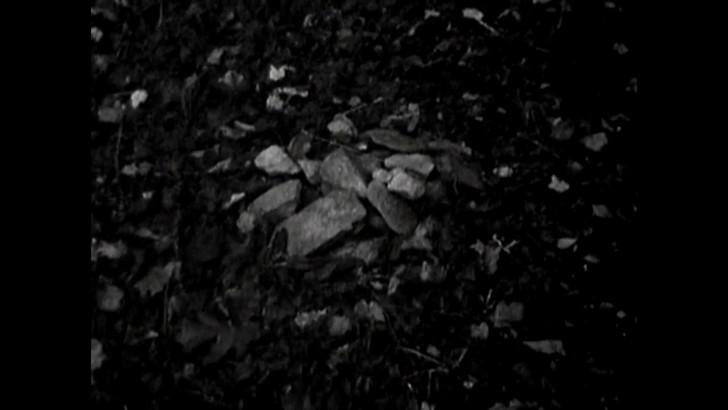 森に積まれた石