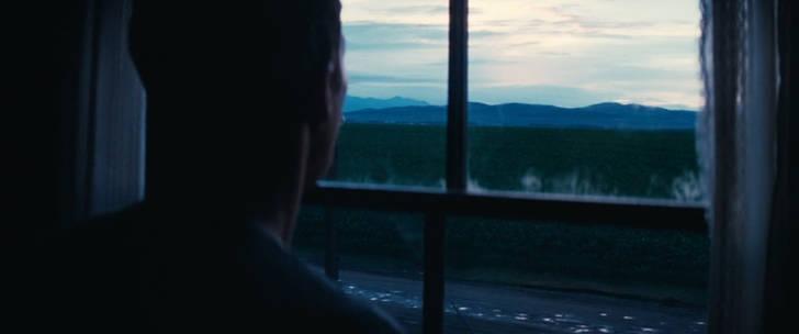 夜明け、とうもろこし畑を眺めるクーパー